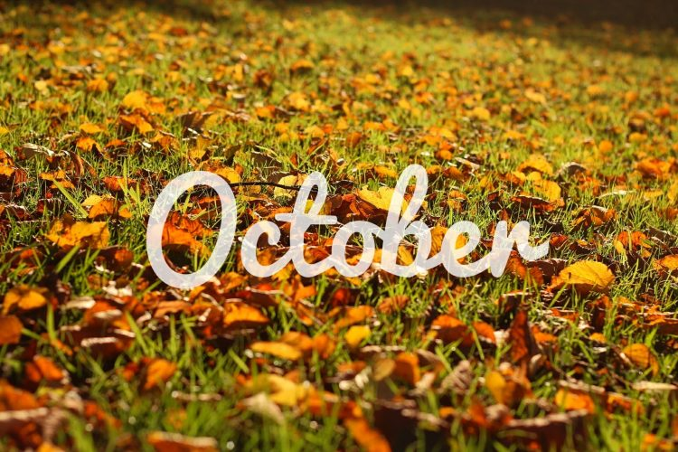 Oktober Playlist October Spotify Musik